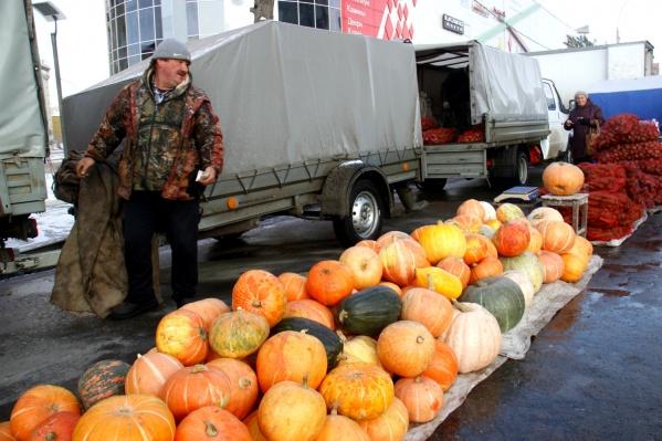 Тыквы на ярмарке продаются по 20 рублей за килограмм