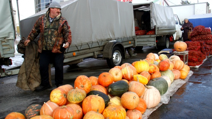 Картошка — по 140, яблоки — по 200: что ещё можно купить на сельскохозяйственной ярмарке на Маркса