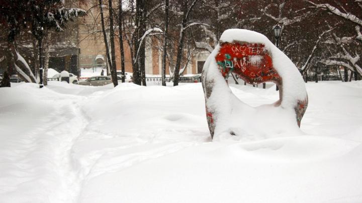 Никогда такого не было: снегопад в Новосибирске побил вековой рекорд