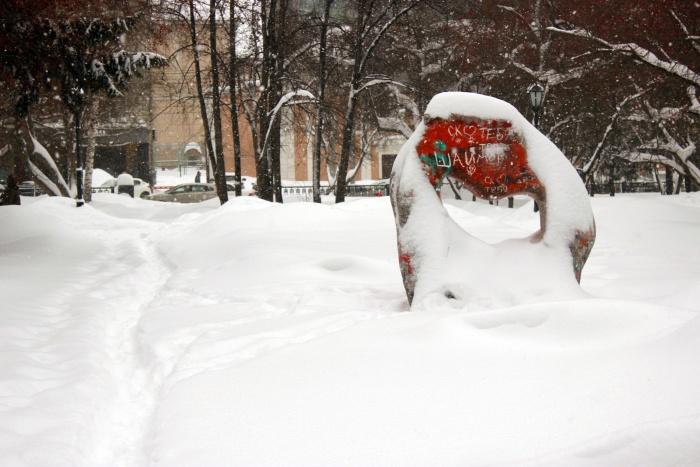 Снег побил два рекорда за век и полвека. На фото — заснеженный Первомайский сквер
