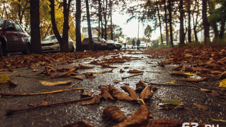 «Будет сильный ветер»: синоптики предупредили об ухудшении погодных условий
