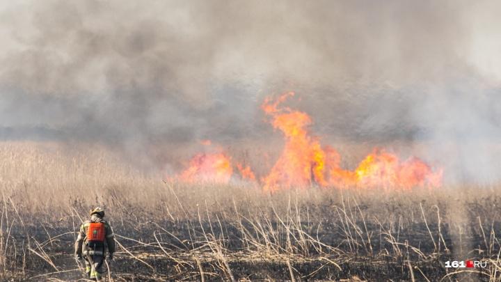 С 10 по 12 июня в Ростовской области ожидается чрезвычайная пожароопасность