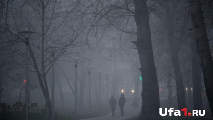 Синоптики предупреждают жителей Башкирии о снегопадах и гололёде