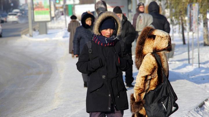 Омские синоптики предупредили о 28-градусных морозах