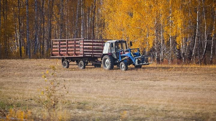 Делу венец: на Южном Урале тракториста арестовали за пьяное вождение, но отпустили на свадьбу