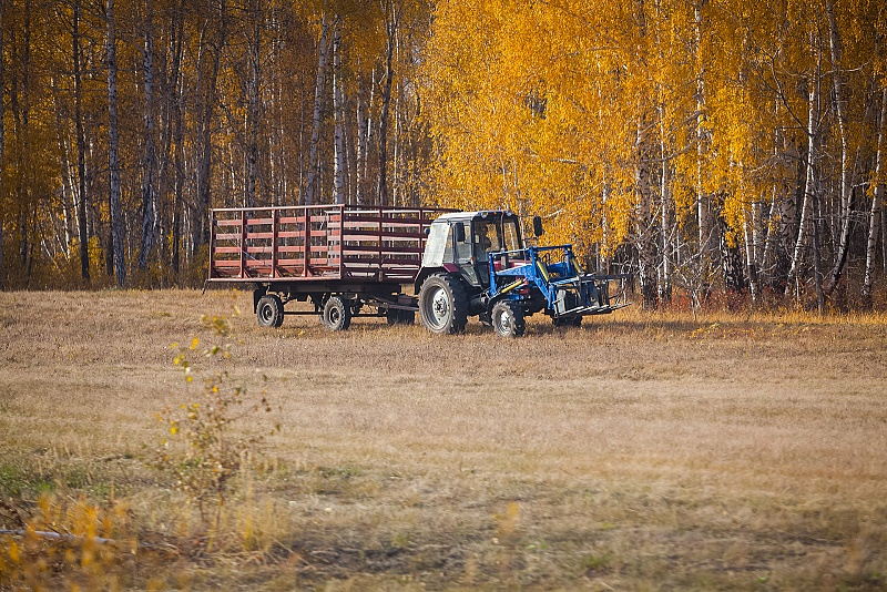 Сельский житель после празднования дня рождения решил доехать до дома на тракторе