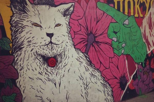 Цветы вокруг кота и надпись появились в минувшие выходные