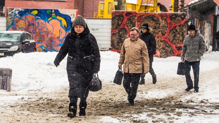 Днём до 0 градусов: синоптики рассказали о новосибирской погоде в ближайшие дни