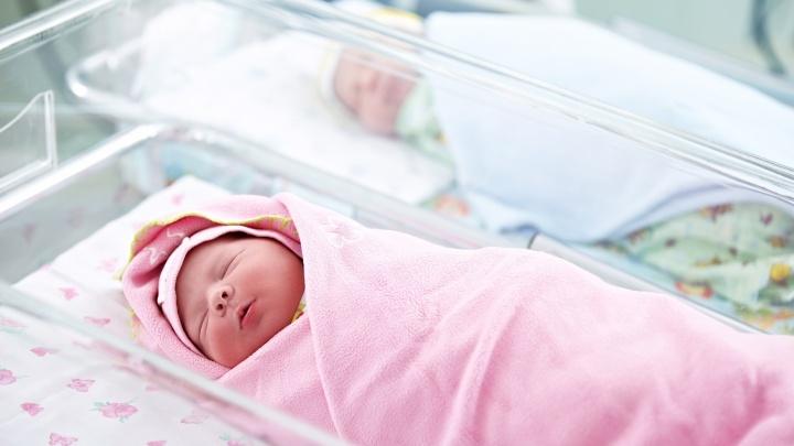 Аист уже на крыше: какие условия создают для новорожденных, поспешивших появиться на свет