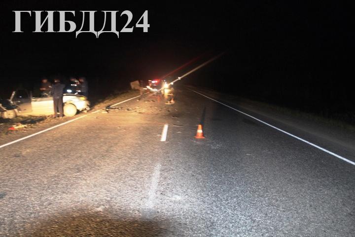 Из-за выбежавшего на дорогу лося погибли двое взрослых и4-летний ребенок