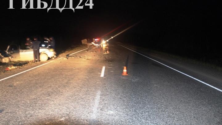 Лось спровоцировал смертельную аварию на трассе