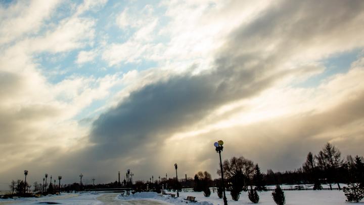 Держитесь: в МЧС предупредили ярославцев о штормовом ветре