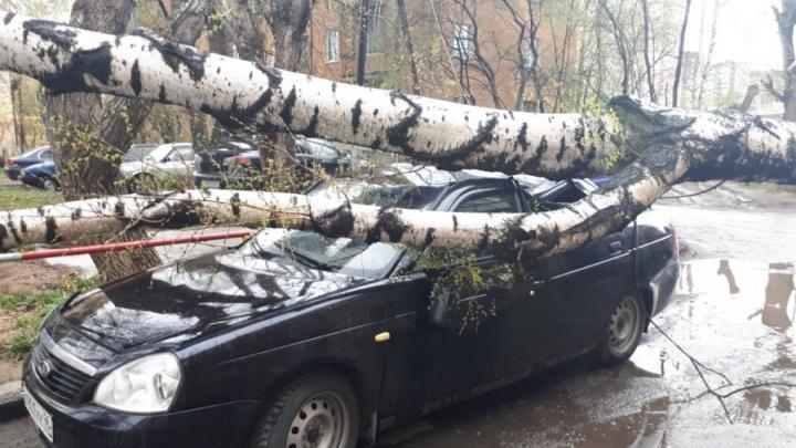 Ни дня без предупреждения: МЧС опасается сильных дождей и ветра в Свердловской области