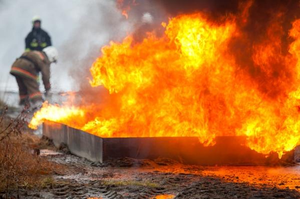 В Архангельской области установилась чрезвычайная пожароопасность в лесах