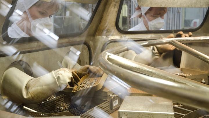 Новосибирские учёные работают над технологией, которая повысит производительность заводов