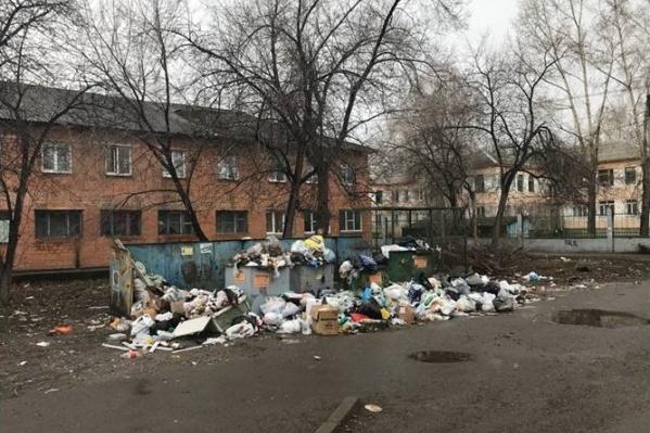 Местные жители жаловались, что управляющая компания не вывозит мусор