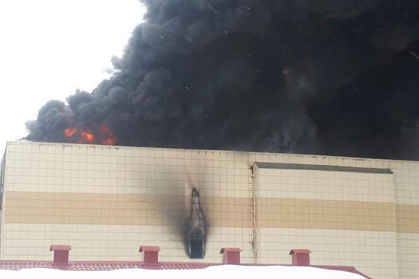 Причины пожара ещё предстоит установить. Но пока главной версией остаётся неисправность проводки и поджог