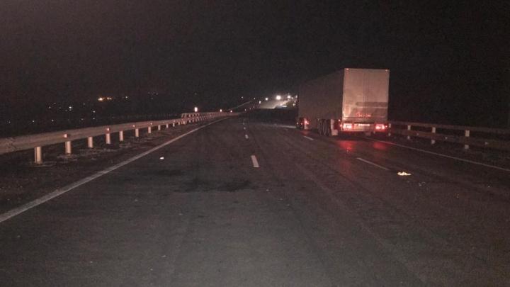 В Башкирии водитель на грузовике насмерть сбил пешехода