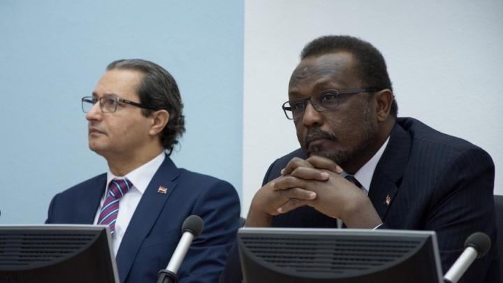 Судан и Египет готовы к интернациональным проектам с ЮУрГУ