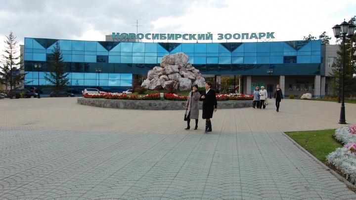 Закроется пораньше: новосибирский зоопарк перешёл на зимний режим работы