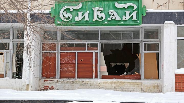 Кремль проверяет ситуацию в Сибае после обращения местных жителей к Путину