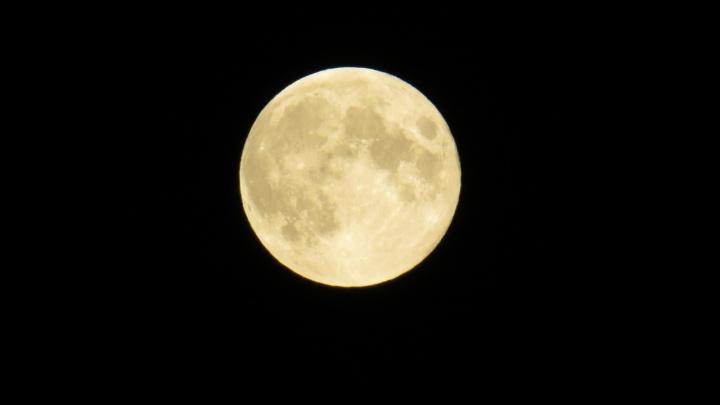 Завораживающее зрелище: красноярцы наблюдали за спрятавшейся Луной