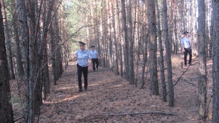 Пошла за грибами и пропала: под Самарой в лесу нашли заблудившуюся пенсионерку