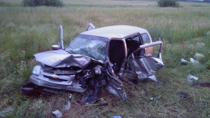 На трассе Омск — Русская Поляна произошло смертельное ДТП: один человек погиб, трое — в больнице