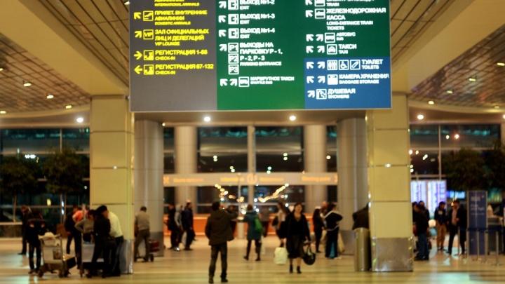 Из-за подозрительного пассажира компания «Ямал» задержала вылет самолета по маршруту Москва — Тюмень