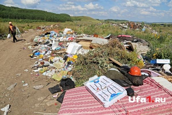 По данным регионального отделения РГО, больше всего свалок находится в пригороде Уфы. Около четырехсот