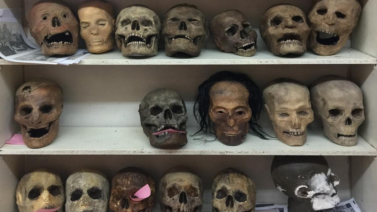 «Заготовки» для будущей экспозиции Музея Смерти — бутафорские копии черепов и голов мумий