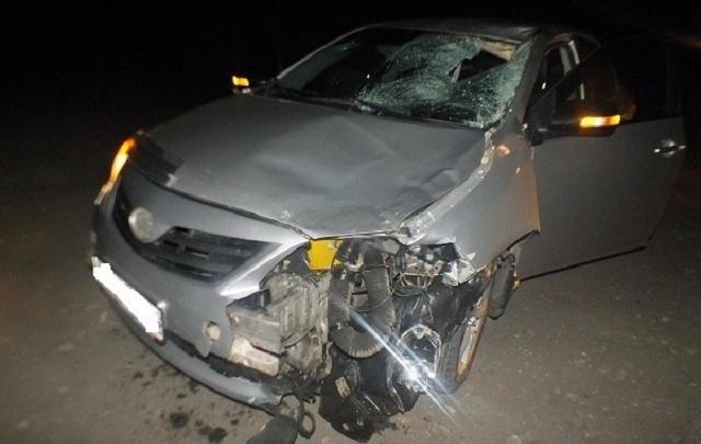 В Кургане на трассе сбили пешехода
