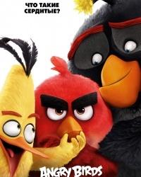 «Сердитые птички» атакуют уфимские кинотеатры