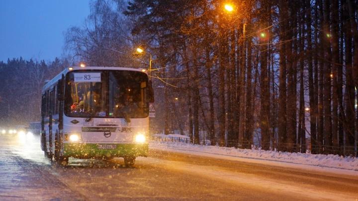 Как уехать на ёлку: опубликовано расписание автобусов на новогоднюю ночь и Рождество