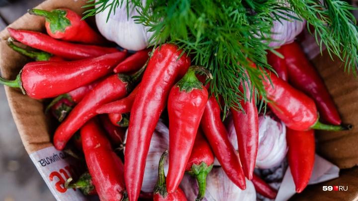 Бабушки демпингуют. Сколько на пермских рынках и у дачников стоят свежие овощи для заготовок