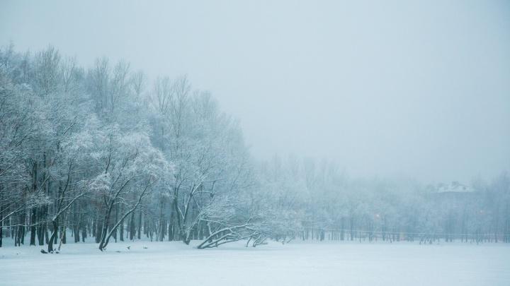 Экстренное предупреждение: в Ярославле ударит лютый мороз