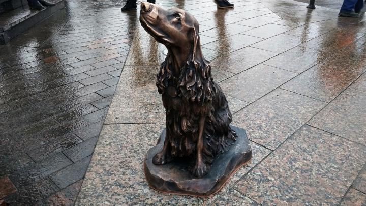 Рядом со статуей Городового установили бронзового спаниеля