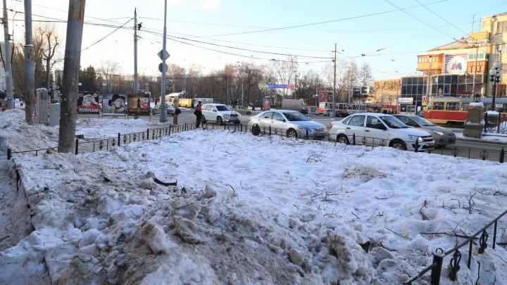В Екатеринбурге вырубят больше тысячи деревьев и кустарников, которые мешают ЕТК