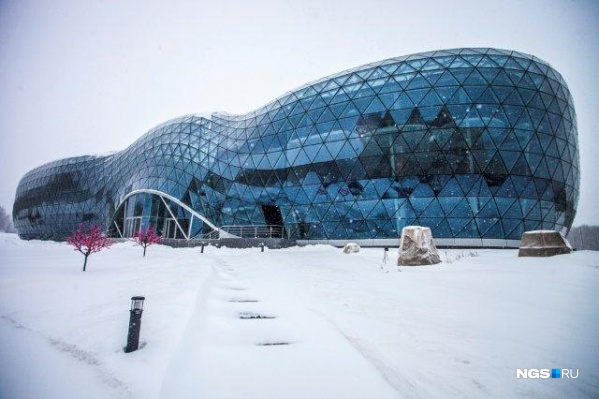 Здание Биотехнопарка в Кольцово