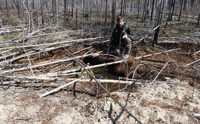 Ученые Керженского заповедника показали берлогу, в которой зимовали 4 медведя