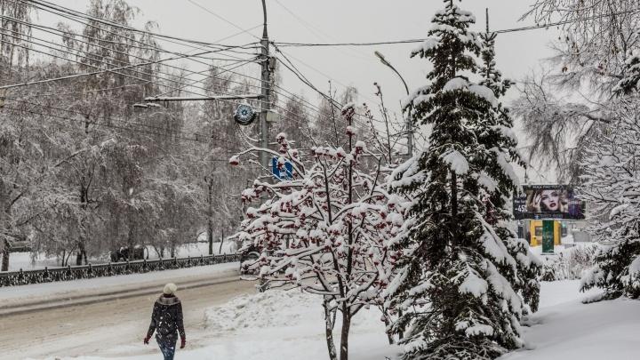 В тёплом секторе циклона: на выходных в Новосибирске будет +2 градуса