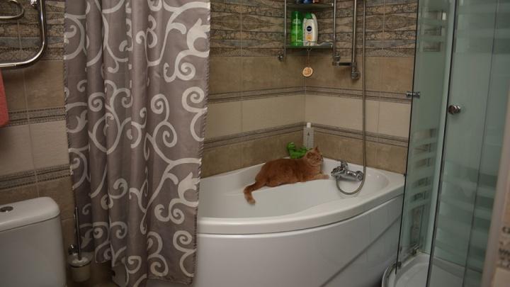 Когда устал от маленькой ванной: совмещенный санузел, где поместилось все