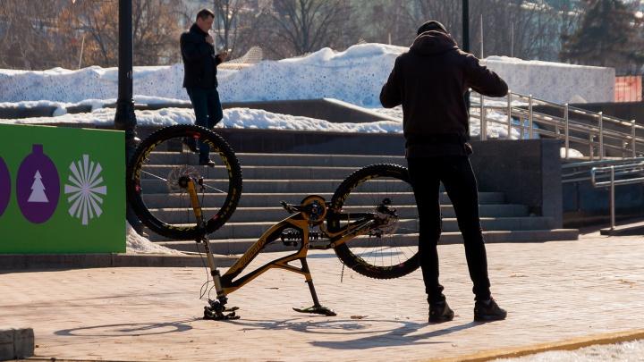 Подальше от машин: в Самаре создадут сеть велодорожек