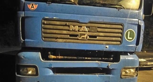 Нажал на тормоз, вывернул руль, но не успел: на трассе Екатеринбург - Тюмень водитель фуры сбил мужчину
