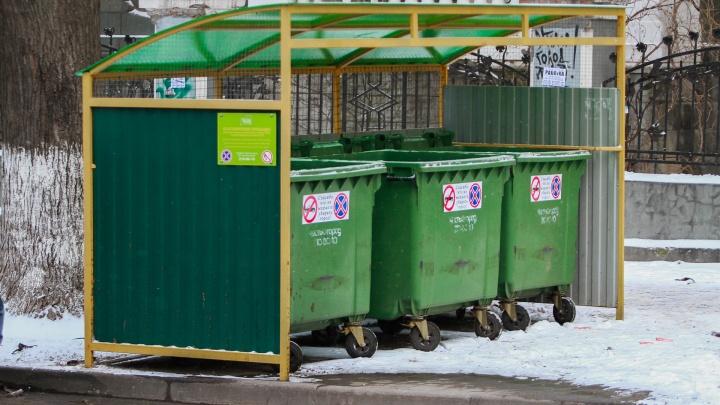 Министр ЖКХ Ростовской области рассказал, почему с ростовских улиц не вывозят мусор