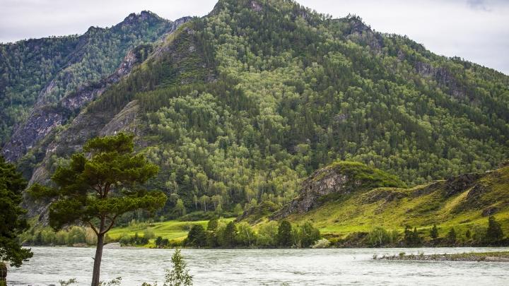 Смертельный поход: турист из Новосибирска сорвался в горах Алтая, его напарник погиб