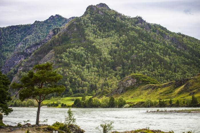 Альпинисты сорвались с вершины Северо-Чуйского хребта