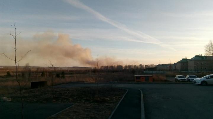 «Огонь идёт стеной»: горящая трава второй день угрожает «Белому хутору»