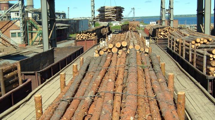 ГК «Титан» запустила проект по модернизации точек отгрузки лесопродукции
