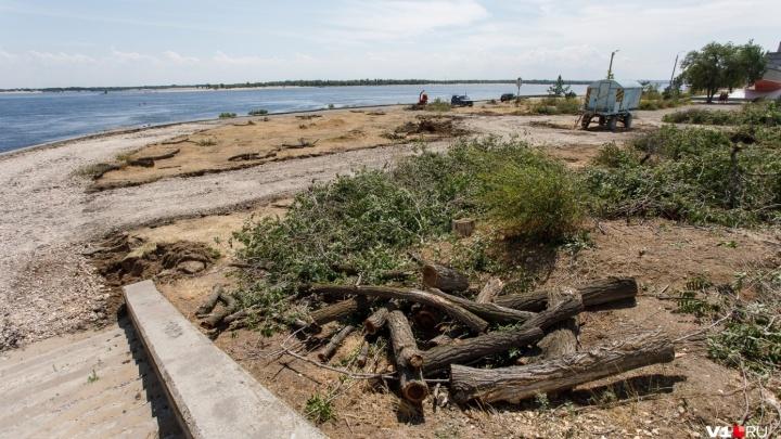 «Правление напрочь лишено культуры»: в Волгограде «убили» зеленый парк с живописным прудом